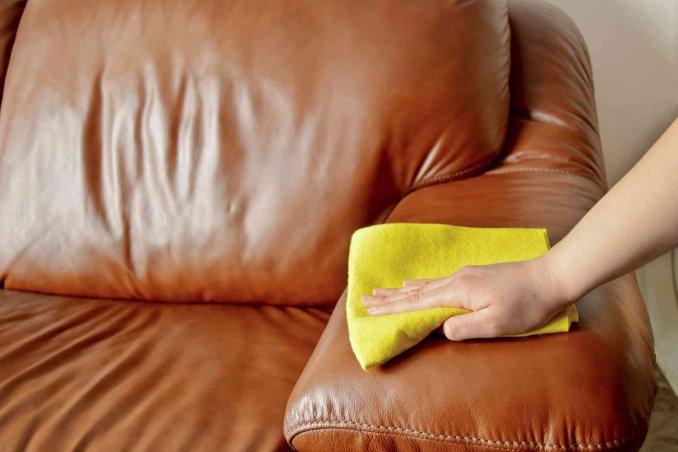 Prodotti per la pulizia della pelle e del tessuto